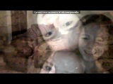 «Webcam Toy» под музыку С. В. Рахманинов, Фредерик Франсуа Шопен. НЕЖНОСТЬ - Божественная музыка!Весенний вальс . Picrolla